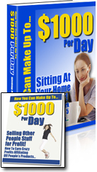 $1000 Per Day: Sitting at Your Home Computer